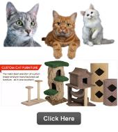 Catsplay cat furniture